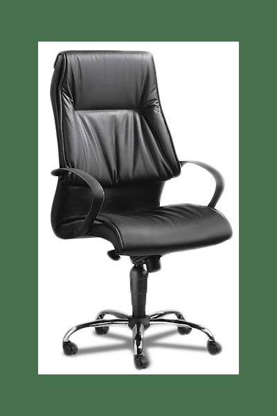 Leather Executive